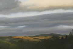 Evening-landscape-1
